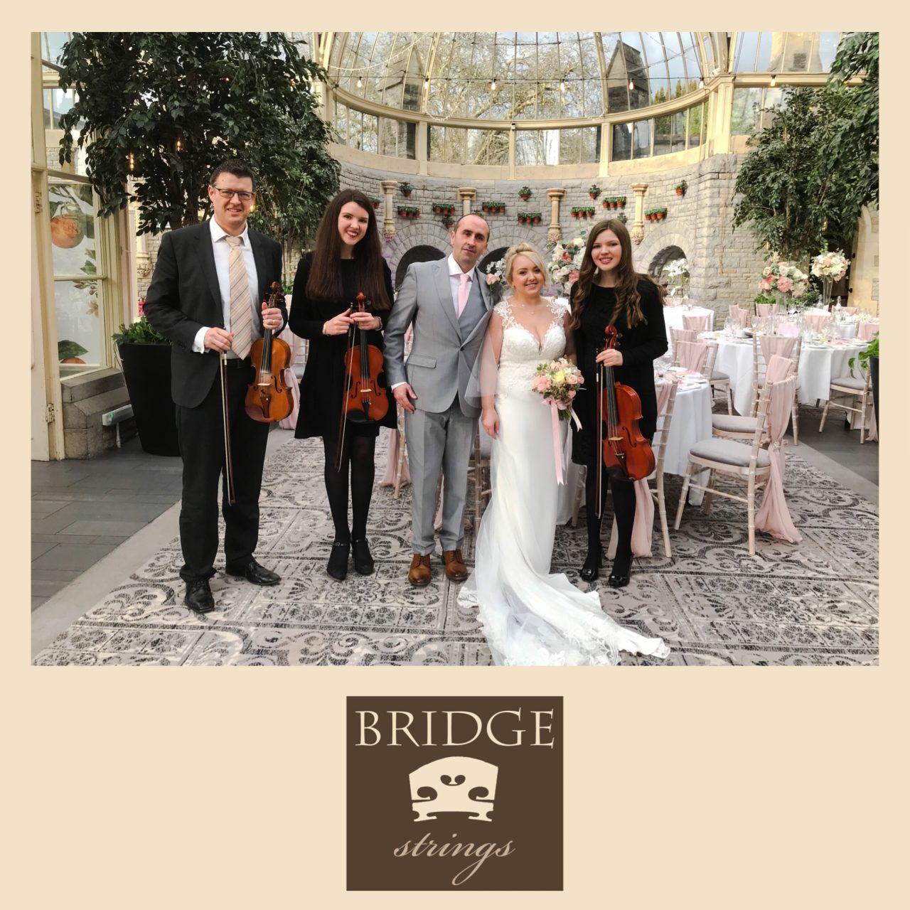 Congratulations Laura And Roy • Bridge Strings